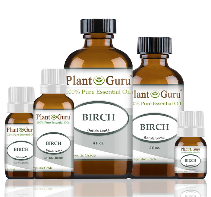 Birch (Sweet)