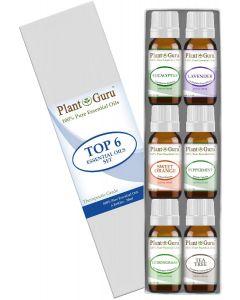 Essential Oil Variety Set - 6 Pack