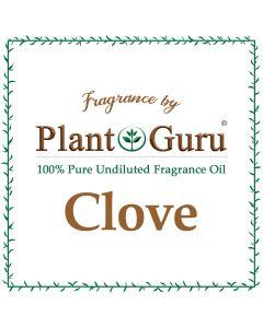 Clove Fragrance Oil
