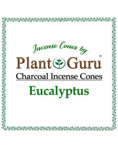 Eucalyptus Incense Cones