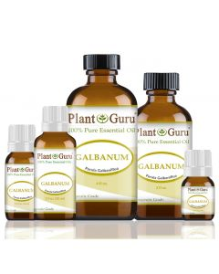 Galbanum Essential Oil