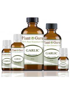 Garlic Essential Oil (Allium Sativum)