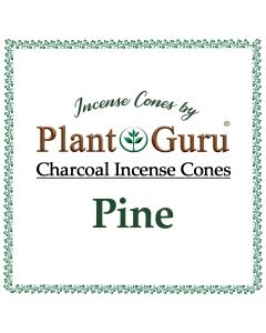 Pine Incense Cones