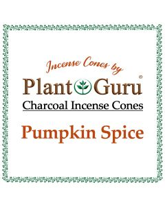 Pumpkin Spice Incense Cones