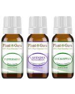 Beginner's Trio Essential Oil Set. 100% Pure Therapeutic Grade
