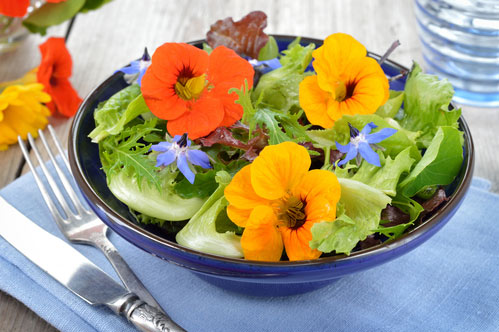 How To Make The Best Use of Edible Flowers