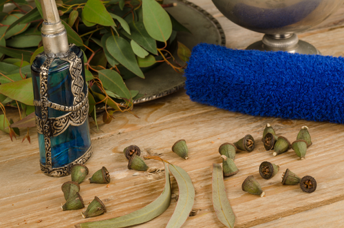 Five Reasons Why You Should Keep Organic Eucalyptus Essential Oil At Home