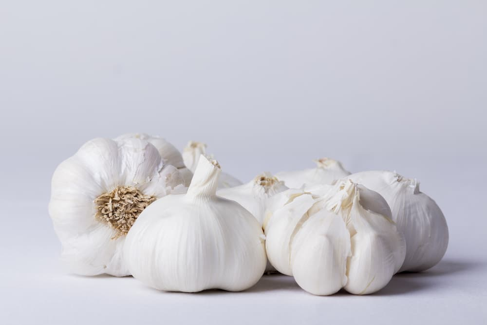 Ingredient Spotlight: Garlic (Allium Sativum)