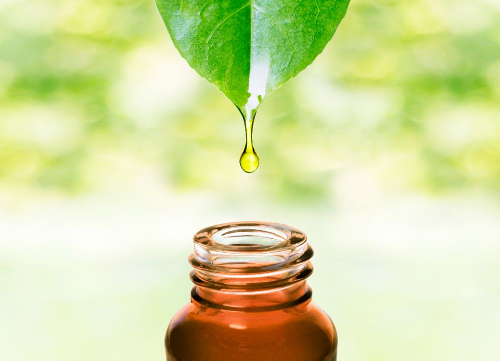 What Does It Mean To Buy Organic Essential Oils?
