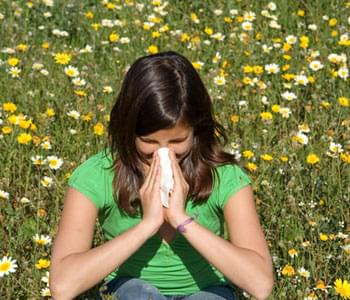 Common Causes Of Summer Allergies
