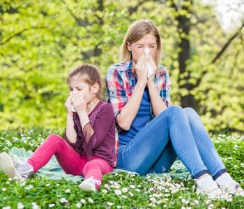 Dealing With A Spring Allergy