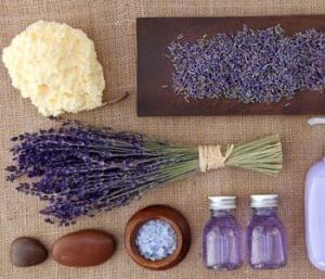 DIY Fun With Lavender Essential Oil