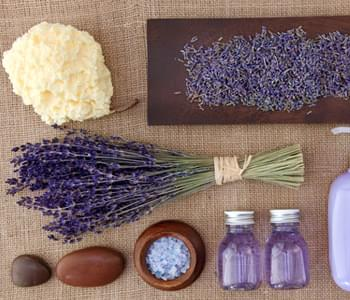 DIY Fun With Lavender Essential Oil