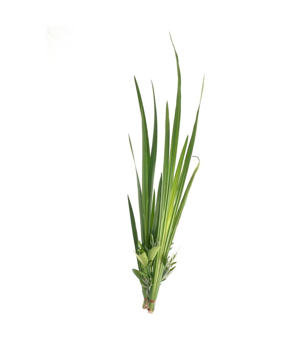 Essential Oil Ingredient Palmarosa Grass Seeds
