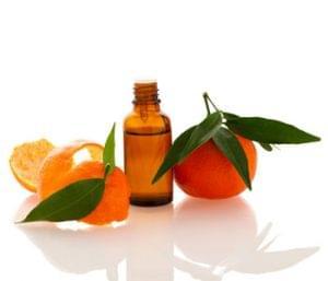 Ingredient Spotlight Sweet Orange
