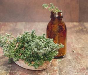 Ingredient Spotlight: Thyme