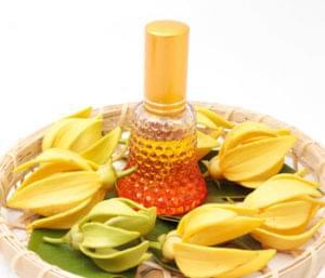 Ingredient Spotlight: Ylang Ylang